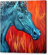 Equus Diabolus Diablo Canvas Print