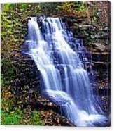 Erie Falls Vertical Panoramic Canvas Print