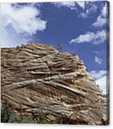 Eroded Sandstone Zion Np Utah Canvas Print