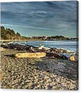Esquimalt Lagoon - Logs And Beach Canvas Print
