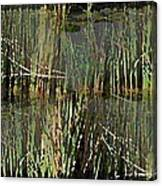 Estuaries Edge Canvas Print