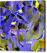 Etchings Of Purple And Green Canvas Print