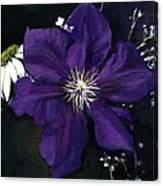 Etoile Violette - Clematis Canvas Print