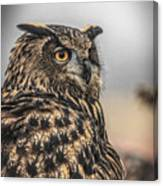 Eurasian Eagle Owl Canvas Print