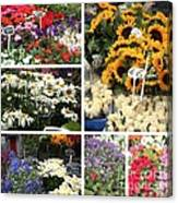 European Flower Market Collage Canvas Print
