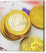 Euros Canvas Print