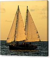 More Sails In Key West Canvas Print