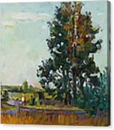 Evening At The Forest Edge Canvas Print