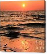 Evening Beach Stroll Canvas Print