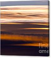 Evening Golds Canvas Print