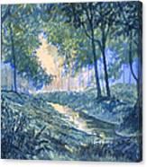 Evening In Wykeham Forest Canvas Print