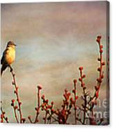 Evening Mocking Bird Canvas Print