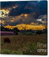 Evening On The Farm One Canvas Print