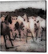 Evening Roundup - Featured In Comfortable Art Group Canvas Print
