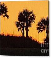 Evening Silhouette Canvas Print