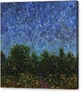 Evening Star Canvas Print