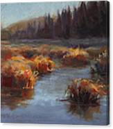 Ever Flowing Alaskan Creek In Autumn Canvas Print