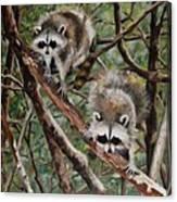 Everglade Babies Canvas Print