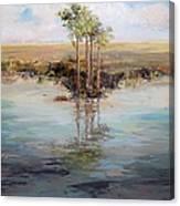 Everglade Palms Canvas Print