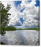 Everglades Lake - 0278 Canvas Print