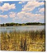 Everglades Pond Canvas Print