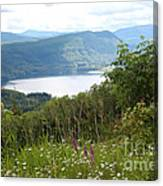 Evergreen Overlook Canvas Print