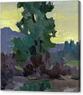 Evergreen Reflections Canvas Print