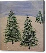 Evergreen Winter Canvas Print