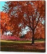 Every Year I Miss Autumn After It Is Over Canvas Print