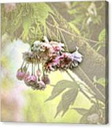 Everyday Blessings Canvas Print