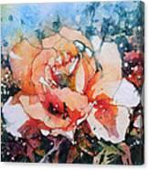 Everythings Peachy . . . Peach Rose Canvas Print