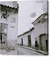 The Life Of Cuzco Canvas Print