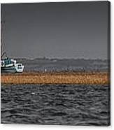 Evolution On The Swale Canvas Print