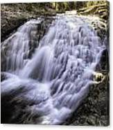 Evolution Waterfall Canvas Print