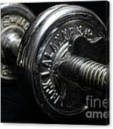 Exercise  Vintage Chrome Weights Canvas Print