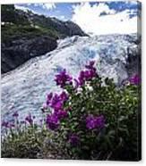 Exit Glacier Canvas Print