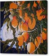 Exotic Harvest Canvas Print