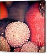 Exotique 2 Canvas Print