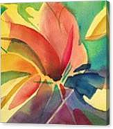 Exploding Lily Canvas Print