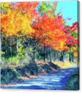 Explosion Of Color - Blue Ridge Mountains I Canvas Print