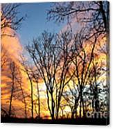 Explosion Of Color In The Sky Canvas Print