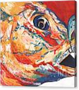 Expressionist Blue Gill On Lure Canvas Print
