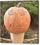Expressive Pumpkin Canvas Print