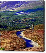Extasy In Cairngorms National Park Scotland Canvas Print