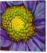 Extreme Flower Canvas Print