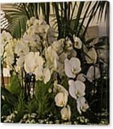 Exuberant Orchid Display Canvas Print