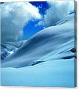 Eye Catcher In Snow Canvas Print