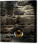 Eye In Brick Wall Canvas Print