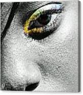 Eye Of Color Canvas Print