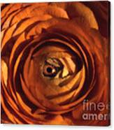 Eye Of The Bloom Canvas Print